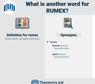 rumex, synonym rumex, another word for rumex, words like rumex, thesaurus rumex