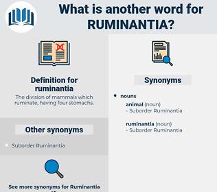ruminantia, synonym ruminantia, another word for ruminantia, words like ruminantia, thesaurus ruminantia