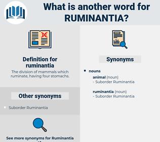ruminantia, synonym ruminantia, another word for ruminantia, words like ruminantia, thesaurus ruminantia