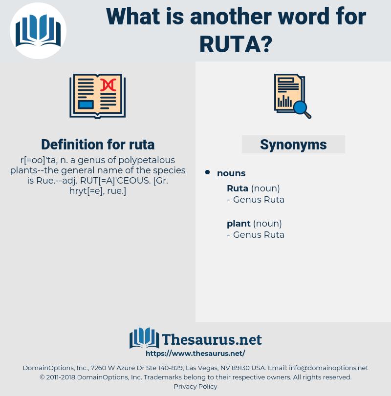 ruta, synonym ruta, another word for ruta, words like ruta, thesaurus ruta