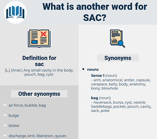 sac, synonym sac, another word for sac, words like sac, thesaurus sac