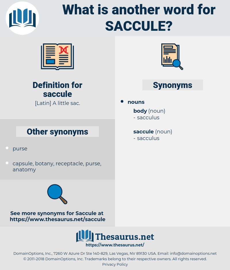 saccule, synonym saccule, another word for saccule, words like saccule, thesaurus saccule