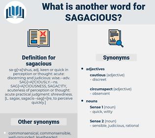 sagacious, synonym sagacious, another word for sagacious, words like sagacious, thesaurus sagacious