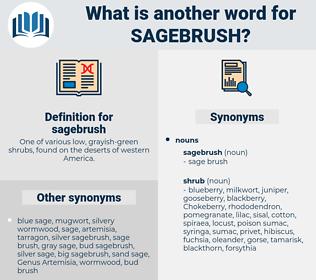 sagebrush, synonym sagebrush, another word for sagebrush, words like sagebrush, thesaurus sagebrush