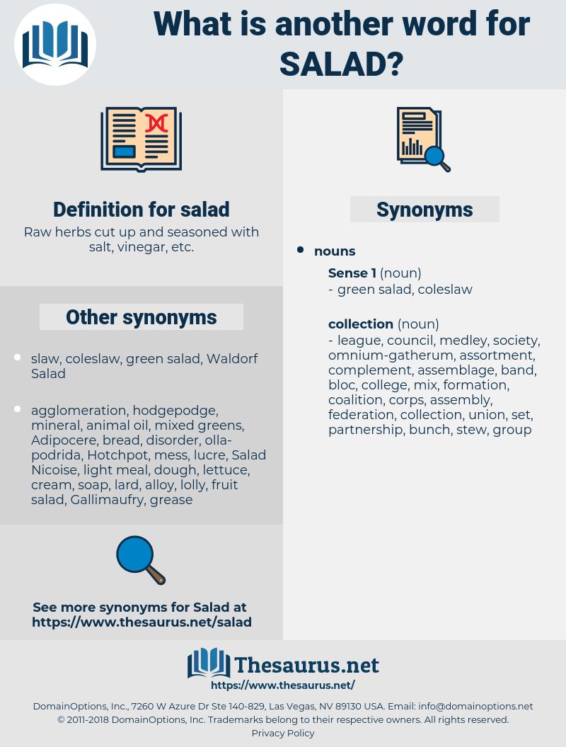 salad, synonym salad, another word for salad, words like salad, thesaurus salad