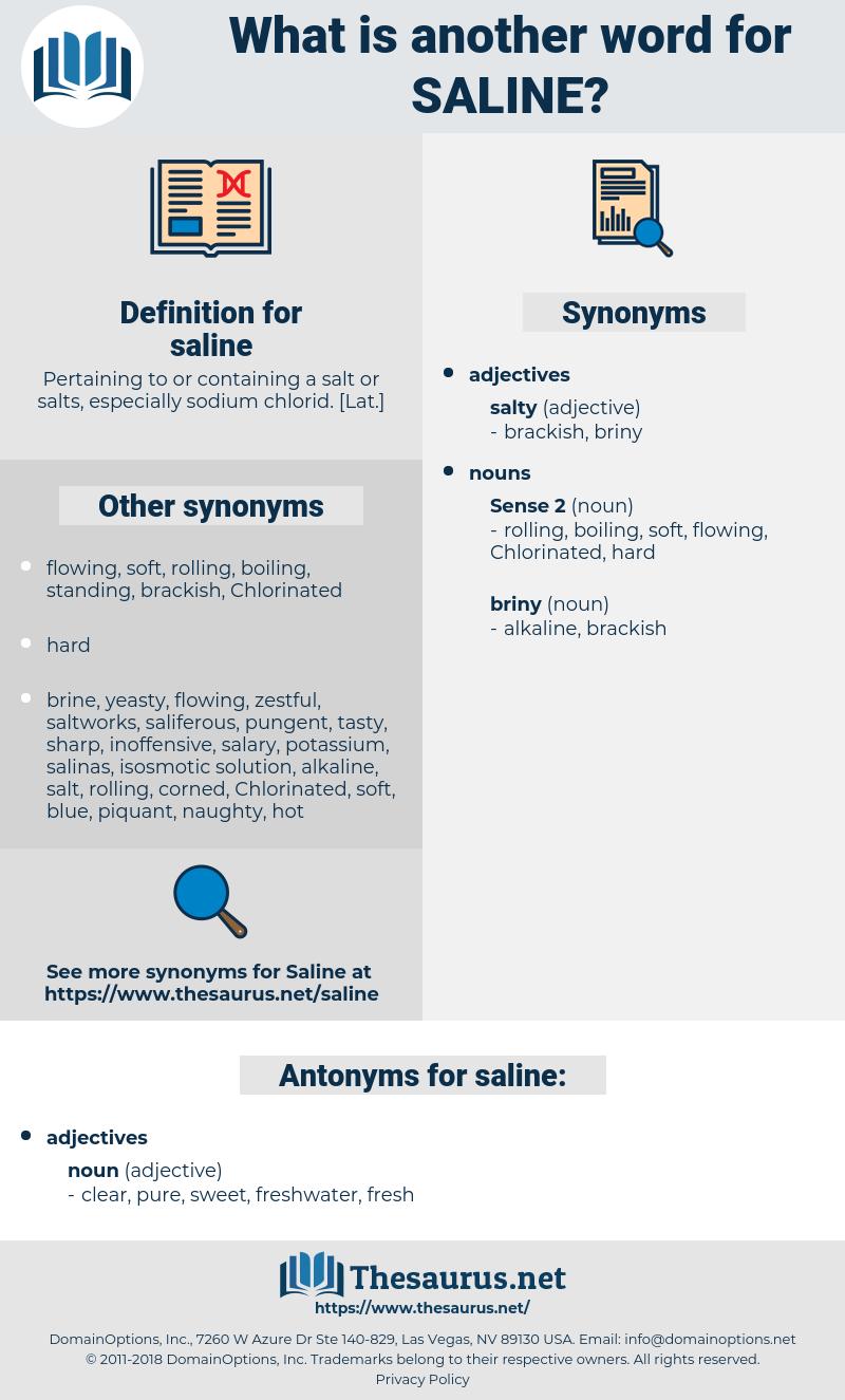 saline, synonym saline, another word for saline, words like saline, thesaurus saline