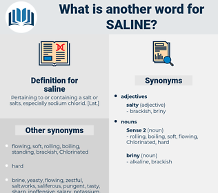 saline, synonym saline, another word for saline, words like saline, thesaurus saline