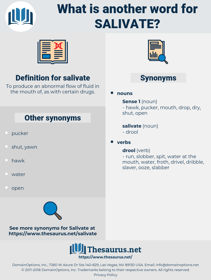 salivate, synonym salivate, another word for salivate, words like salivate, thesaurus salivate