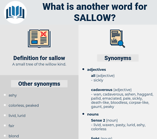 sallow, synonym sallow, another word for sallow, words like sallow, thesaurus sallow