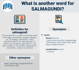 salmagundi, synonym salmagundi, another word for salmagundi, words like salmagundi, thesaurus salmagundi