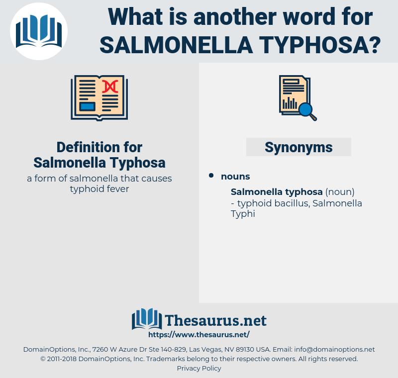 Salmonella Typhosa, synonym Salmonella Typhosa, another word for Salmonella Typhosa, words like Salmonella Typhosa, thesaurus Salmonella Typhosa