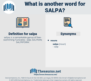 salpa, synonym salpa, another word for salpa, words like salpa, thesaurus salpa