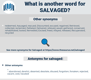 salvaged, synonym salvaged, another word for salvaged, words like salvaged, thesaurus salvaged