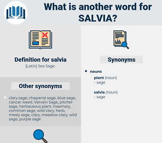 salvia, synonym salvia, another word for salvia, words like salvia, thesaurus salvia