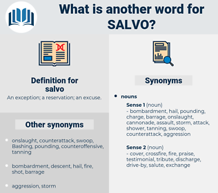 salvo, synonym salvo, another word for salvo, words like salvo, thesaurus salvo