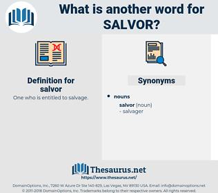 salvor, synonym salvor, another word for salvor, words like salvor, thesaurus salvor