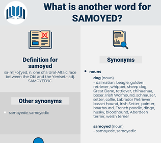 samoyed, synonym samoyed, another word for samoyed, words like samoyed, thesaurus samoyed