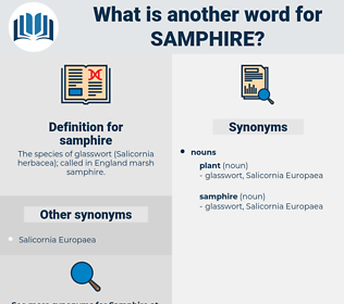samphire, synonym samphire, another word for samphire, words like samphire, thesaurus samphire