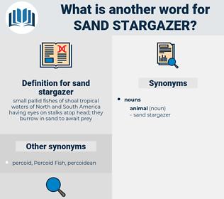 sand stargazer, synonym sand stargazer, another word for sand stargazer, words like sand stargazer, thesaurus sand stargazer