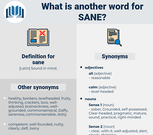 sane, synonym sane, another word for sane, words like sane, thesaurus sane
