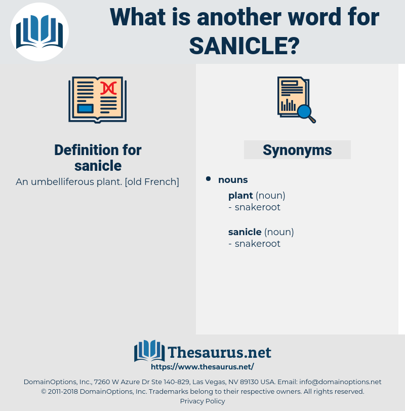 sanicle, synonym sanicle, another word for sanicle, words like sanicle, thesaurus sanicle