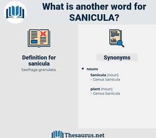 sanicula, synonym sanicula, another word for sanicula, words like sanicula, thesaurus sanicula