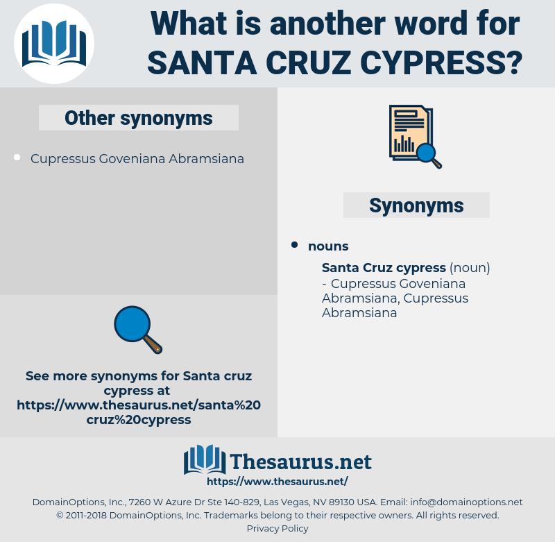 Santa Cruz Cypress, synonym Santa Cruz Cypress, another word for Santa Cruz Cypress, words like Santa Cruz Cypress, thesaurus Santa Cruz Cypress