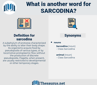 sarcodina, synonym sarcodina, another word for sarcodina, words like sarcodina, thesaurus sarcodina