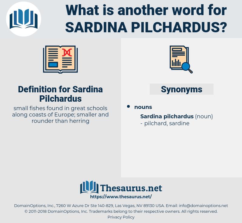 Sardina Pilchardus, synonym Sardina Pilchardus, another word for Sardina Pilchardus, words like Sardina Pilchardus, thesaurus Sardina Pilchardus
