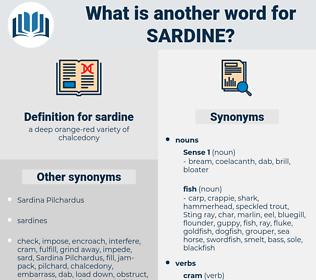 sardine, synonym sardine, another word for sardine, words like sardine, thesaurus sardine