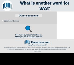 SAS, synonym SAS, another word for SAS, words like SAS, thesaurus SAS