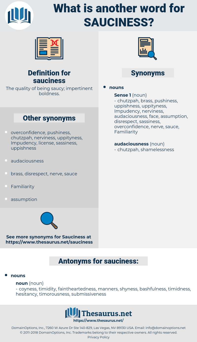 sauciness, synonym sauciness, another word for sauciness, words like sauciness, thesaurus sauciness