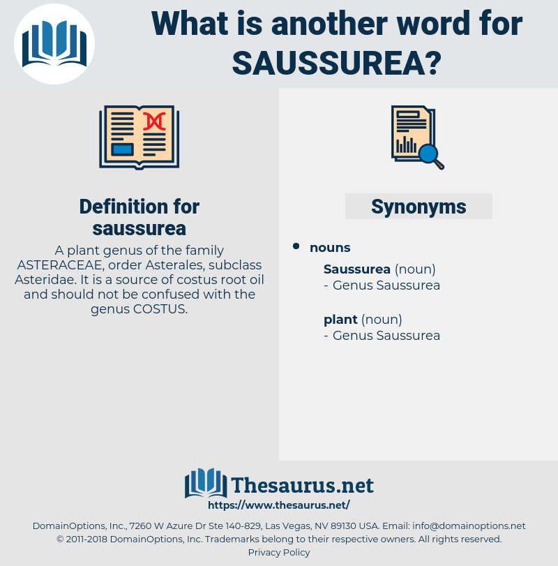 saussurea, synonym saussurea, another word for saussurea, words like saussurea, thesaurus saussurea