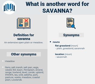 savanna, synonym savanna, another word for savanna, words like savanna, thesaurus savanna