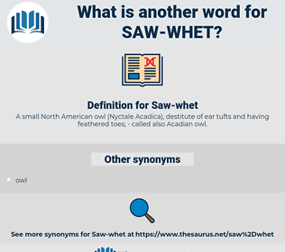 Saw-whet, synonym Saw-whet, another word for Saw-whet, words like Saw-whet, thesaurus Saw-whet