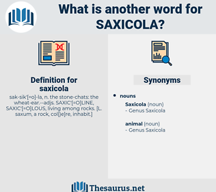 saxicola, synonym saxicola, another word for saxicola, words like saxicola, thesaurus saxicola