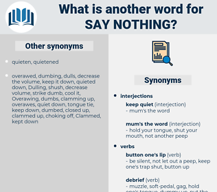 say nothing, synonym say nothing, another word for say nothing, words like say nothing, thesaurus say nothing