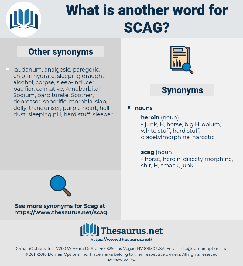 scag, synonym scag, another word for scag, words like scag, thesaurus scag