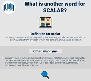 scalar, synonym scalar, another word for scalar, words like scalar, thesaurus scalar
