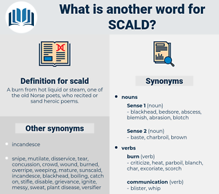scald, synonym scald, another word for scald, words like scald, thesaurus scald