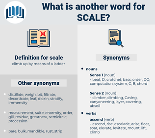scale, synonym scale, another word for scale, words like scale, thesaurus scale