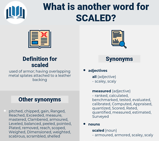 scaled, synonym scaled, another word for scaled, words like scaled, thesaurus scaled