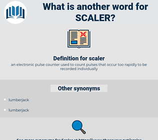 scaler, synonym scaler, another word for scaler, words like scaler, thesaurus scaler