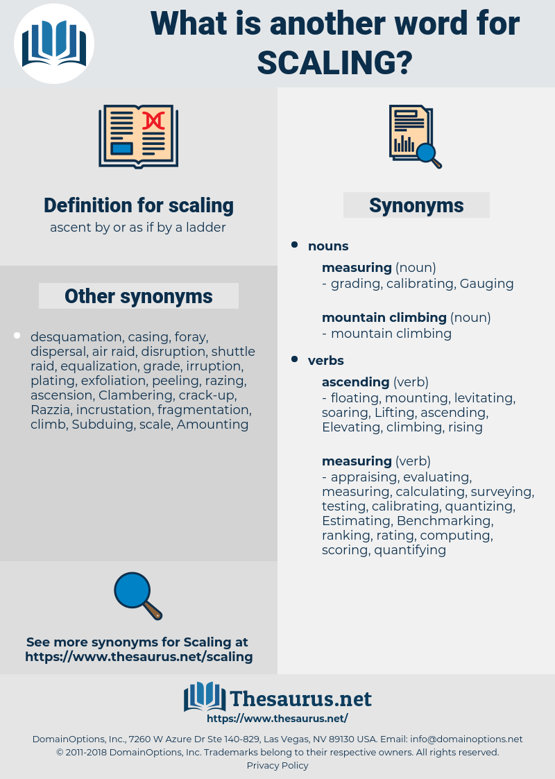 scaling, synonym scaling, another word for scaling, words like scaling, thesaurus scaling