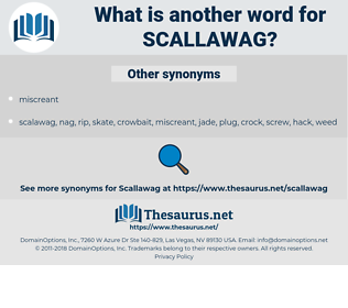 scallawag, synonym scallawag, another word for scallawag, words like scallawag, thesaurus scallawag