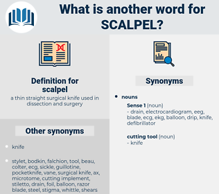 scalpel, synonym scalpel, another word for scalpel, words like scalpel, thesaurus scalpel