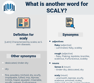 scaly, synonym scaly, another word for scaly, words like scaly, thesaurus scaly