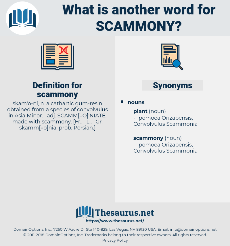 scammony, synonym scammony, another word for scammony, words like scammony, thesaurus scammony