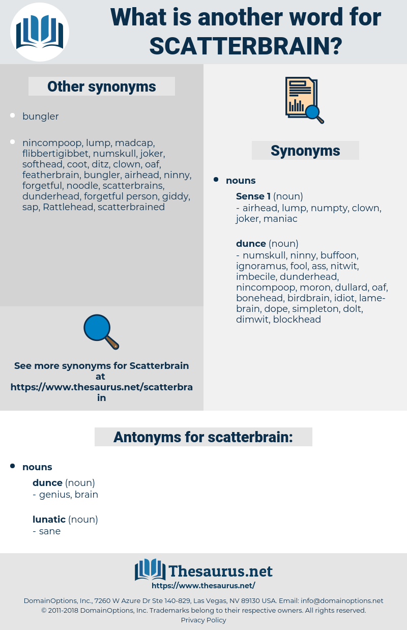 scatterbrain, synonym scatterbrain, another word for scatterbrain, words like scatterbrain, thesaurus scatterbrain