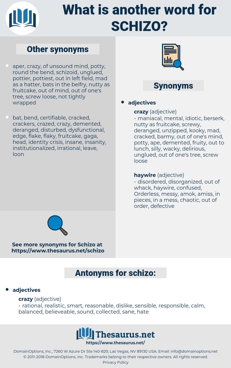 schizo, synonym schizo, another word for schizo, words like schizo, thesaurus schizo